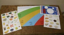 Canadian Rainbow Food Clings Kit