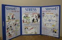 Stress Display